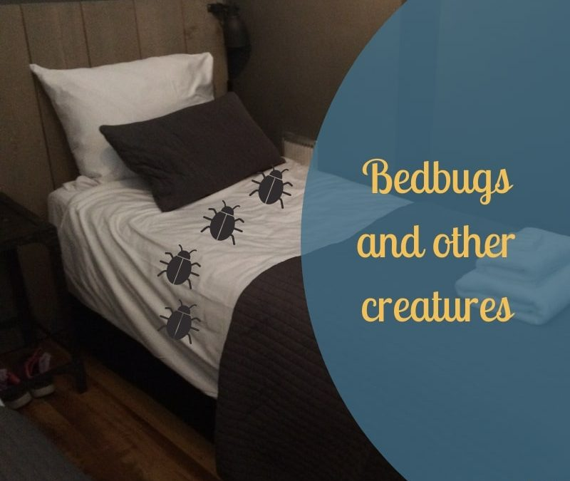 bedbugs and other creatures