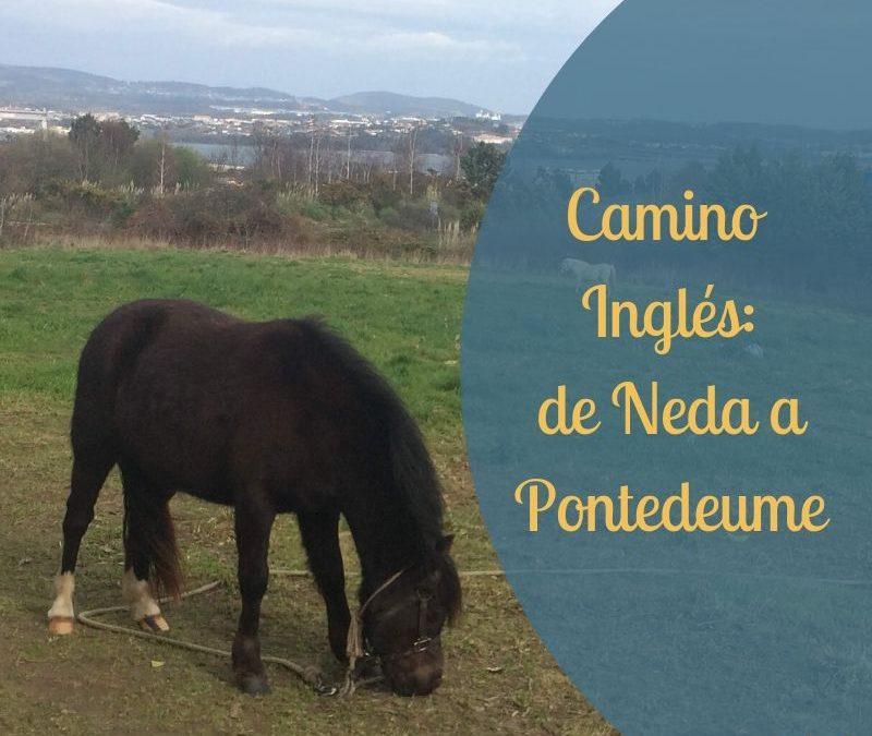 Camino Inglés: de Neda a Pontedeume